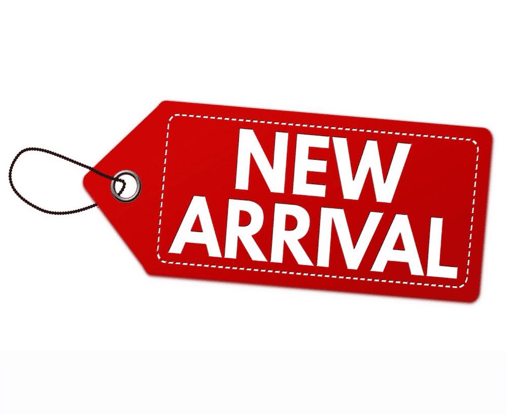 สินค้าเข้าใหม่ มิสเตอร์แอล ฮอบบี้ จำหน่ายโมเดลประกอบเกรดพรีเมียม รายละเอียดสูง